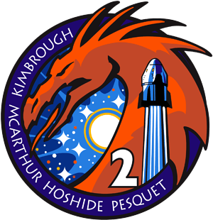 SpaceX Crew 2 NASA Patch